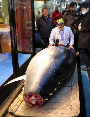 日本一条金枪鱼拍出2000万元高价