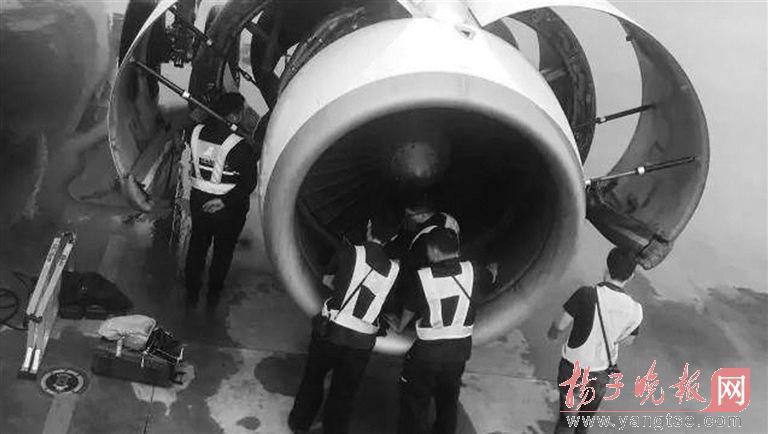 老太向发动机投硬币 若未发现一飞机乘客就完了?