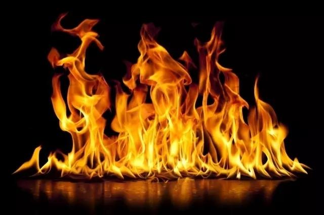 都灵失业女子在INPS社保局内自焚