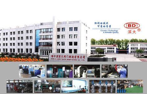 滨大阀门(新加坡)国际有限公司注册成立