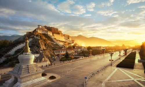 """扎根西藏 服务西藏 上海""""白玉兰""""绽放雪域高原"""