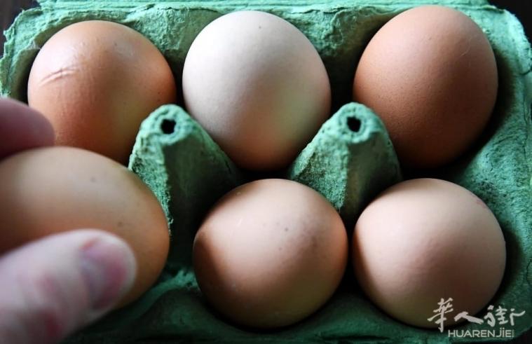 意大利鸡蛋沙门氏菌感染,紧急撤回3个批次
