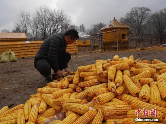 财政部:继续支持农业保险发展 完善农业保险制度