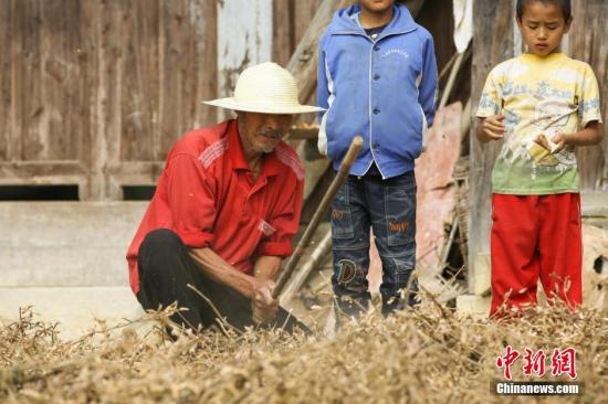 农业农村部预计8月大豆进口量或调减 成本保持高位