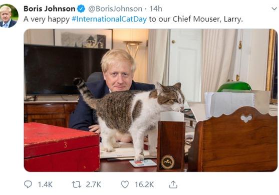 """英首相约翰逊上任两周首发办公照 与""""首席捕鼠官""""合影"""