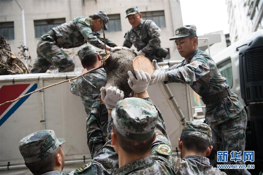 """风雨未消再集结——驻澳部队""""帕卡""""过后第一时间继续救灾"""