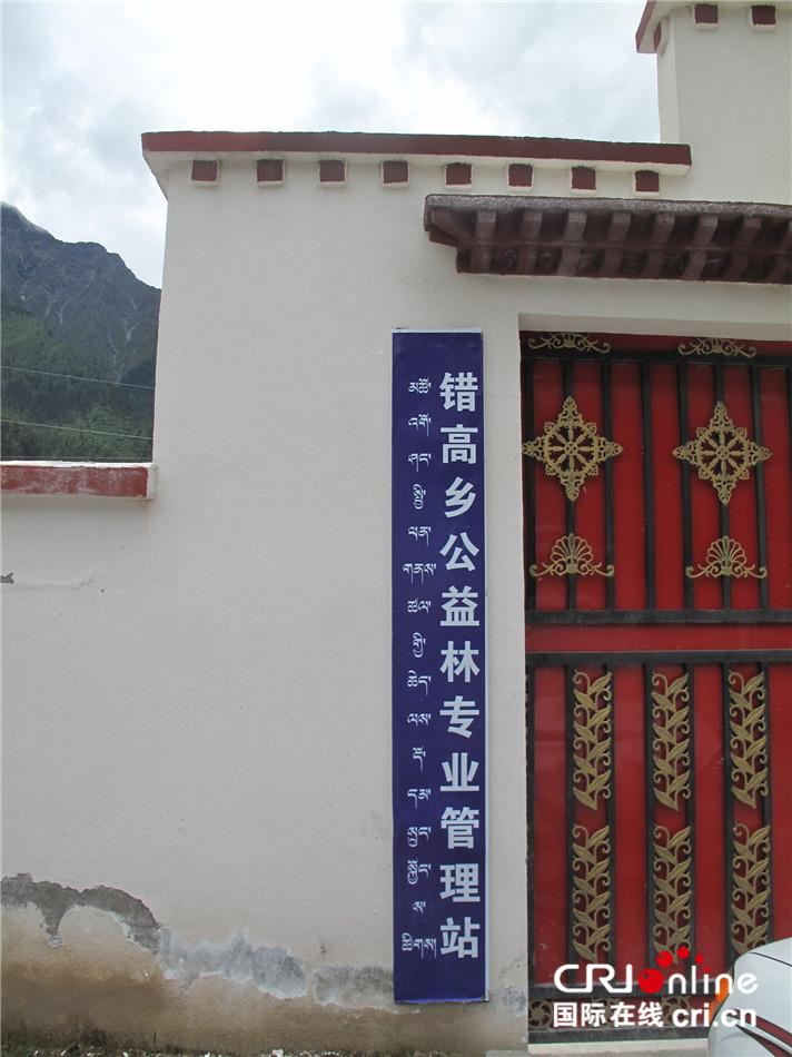 【微观林芝】西藏林芝护林员:各级护林员日常最重要的工作就是巡山