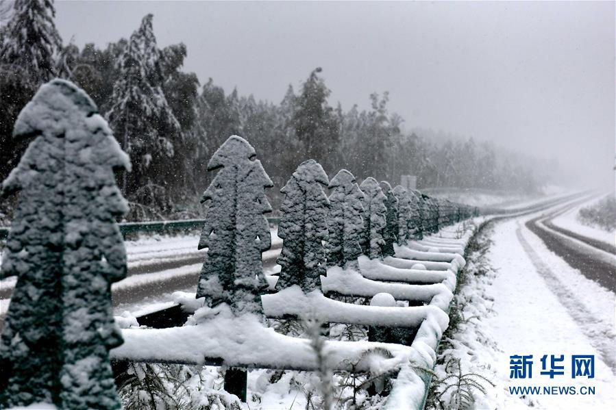 黑龙江漠河八月飞雪